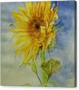 Sunflower Tribute To Van Gogh Canvas Print