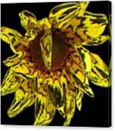Sunflower With Stone Effect Canvas Print