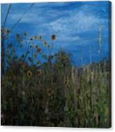 Sunflowers And Corn With Lines Canvas Print