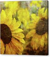 Sunflowers And Water Spots 2773 Idp_2 Canvas Print