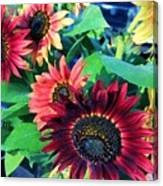 Sunflowers At A Fair Canvas Print