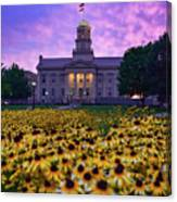 Sunflowers At The Old Capitol Canvas Print