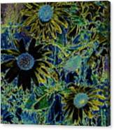 Sunflowers By Wall Canvas Print
