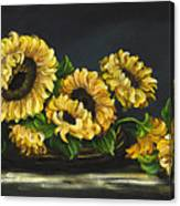 Sunflowers From The Garden Canvas Print