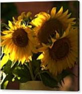 Sunflowers In A Vase Canvas Print