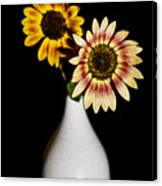 Sunflowers On Black Background And In White Vase Canvas Print