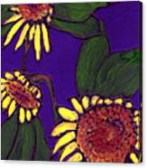 Sunflowers On Purple Canvas Print