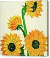 Sunflowers Using Palette Knife Canvas Print