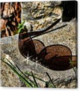 Sunglasses On Stone Canvas Print