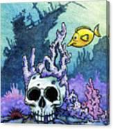 Sunken Head  Canvas Print
