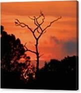Sunken Sun Canvas Print