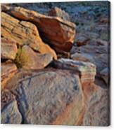 Sunlight Fades Out On Valley Of Fire Canvas Print