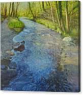 Sunlight In The Glen Canvas Print