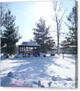 Sunlight In Winter Canvas Print