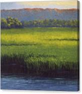 Sunlight On The Marsh Canvas Print