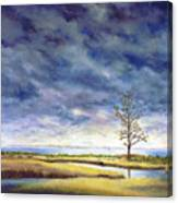 Sunlight On The Marshes 18x24 Canvas Print