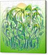 Sunlight On Wet Grass Canvas Print