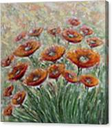 Sunlight Poppies Canvas Print