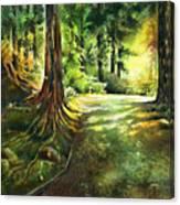 Sunlight Trial Port Moody Canvas Print