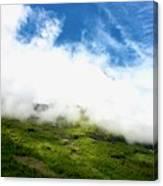Sunlit Hillside Canvas Print