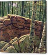 Sunlit Rocks Canvas Print