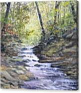 Sunlit Stream Canvas Print