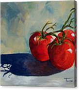 Sunlit Tomatoes  Canvas Print