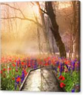 Sunlit Wildflowers Canvas Print