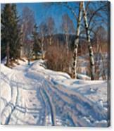 Sunlit Winter Landscape Canvas Print
