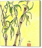 Sunny Bamboo Canvas Print