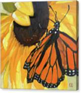 Sunny Butterfly Canvas Print