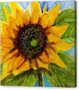 Sunny Disposition Canvas Print