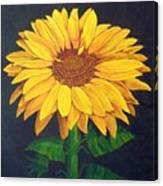 Sunny Flower Canvas Print