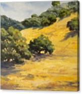 Sunny Hills Canvas Print