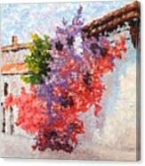 Sunny Morning In Greece Canvas Print