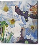 Sunny Summer Petuniias  Canvas Print