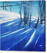 Sunny Traintrip To Hamar Canvas Print