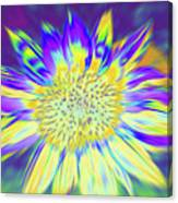 Sunpopped Canvas Print