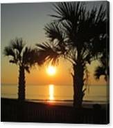 Sunrise And Palms Canvas Print