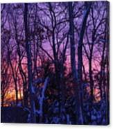 Sunrise And Snow Canvas Print