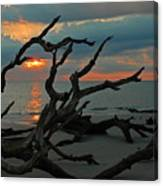 Sunrise At Driftwood Beach 2.2 Canvas Print