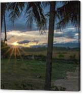Sunrise Between The Palms Canvas Print