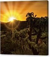 Sunrise Done With An Arizona Flare Canvas Print
