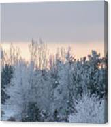 Sunrise Glos Behind Trees Frozen Trees Canvas Print