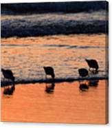 Sunrise Harmony Canvas Print