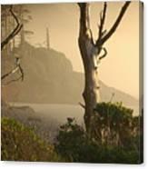 Sunrise Haze Canvas Print