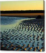 Sunrise In Gold Canvas Print