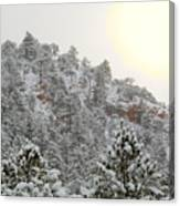 Sunrise In Snowstorm In The Pike National Forest Canvas Print