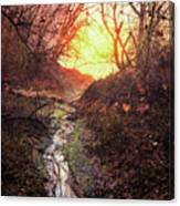 Sunrise In The Forest Canvas Print
