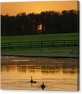 Sunrise On A Gettysburg Duck Pond Canvas Print